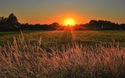 Miracle Morning: Plan elke dag eenvoudig tijd voor jezelf