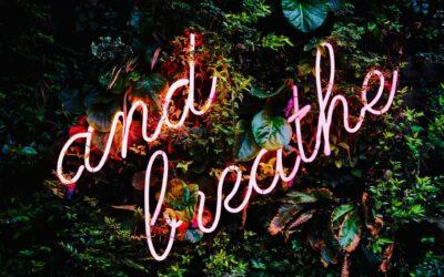 De Wim Hof Methode: op naar een gezonder lichaam & geest