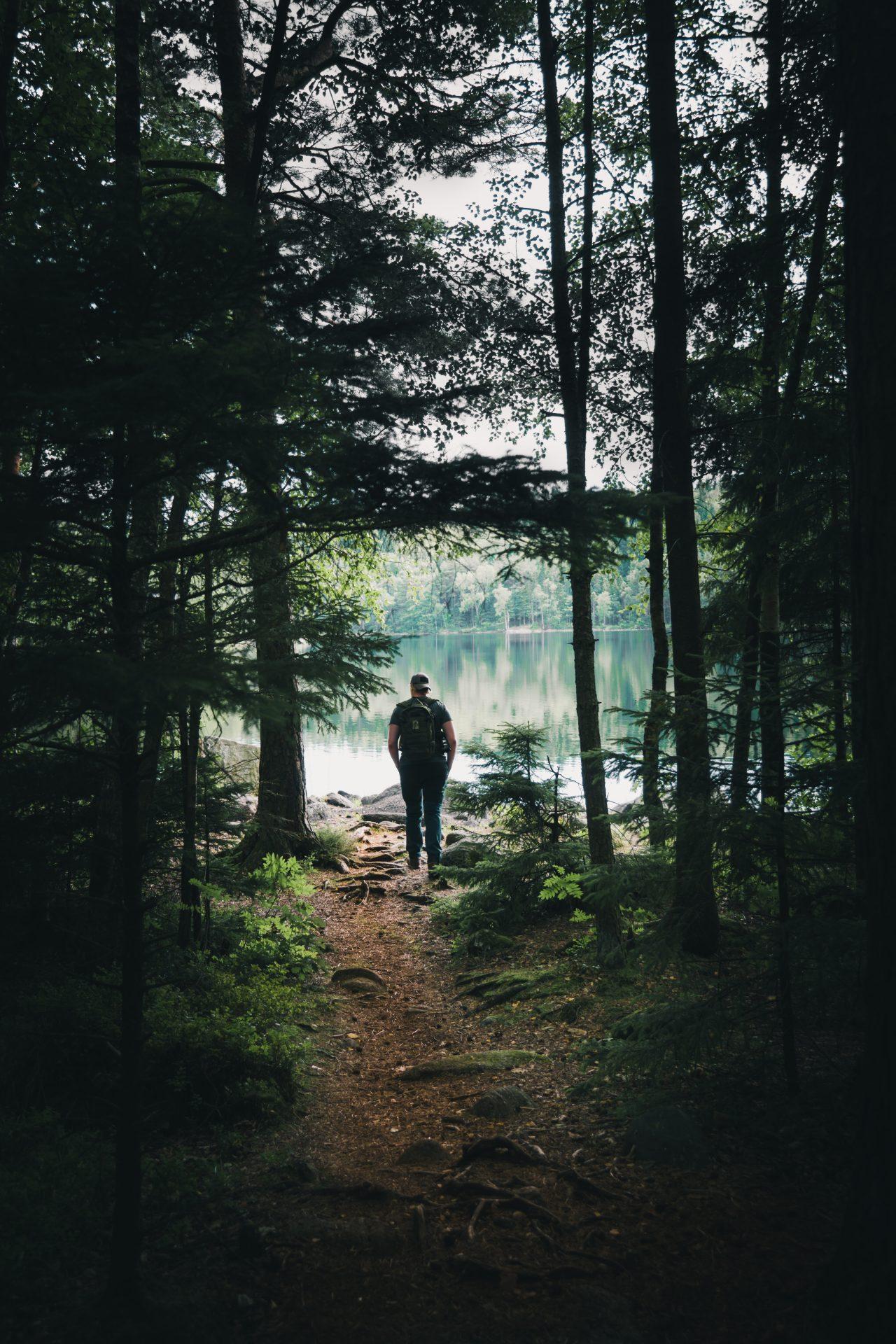 Wandelen: de ultieme stressverlager + dé Wandelboek Top 3